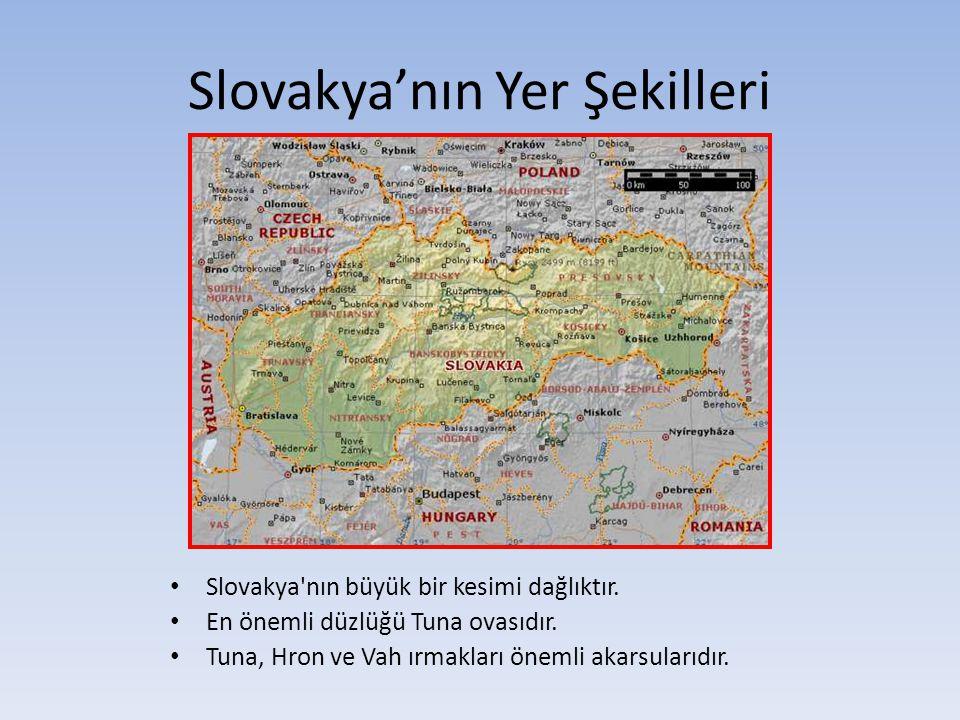 Slovakya'nın Yer Şekilleri