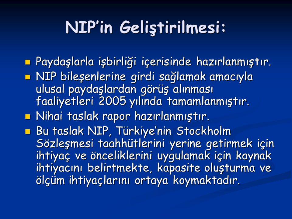 NIP'in Geliştirilmesi: