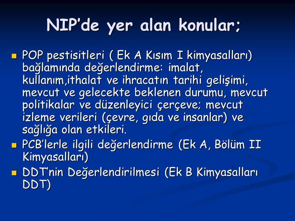 NIP'de yer alan konular;