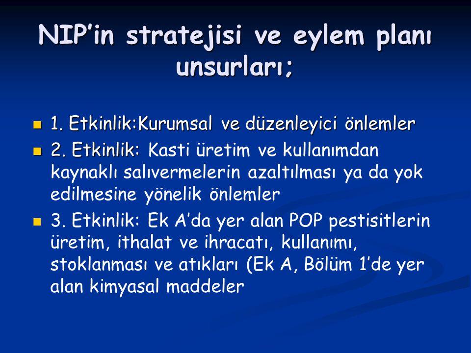 NIP'in stratejisi ve eylem planı unsurları;