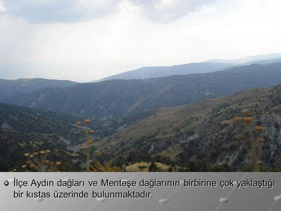 İlçe Aydın dağları ve Menteşe dağlarının birbirine çok yaklaştığı bir kıstas üzerinde bulunmaktadır.