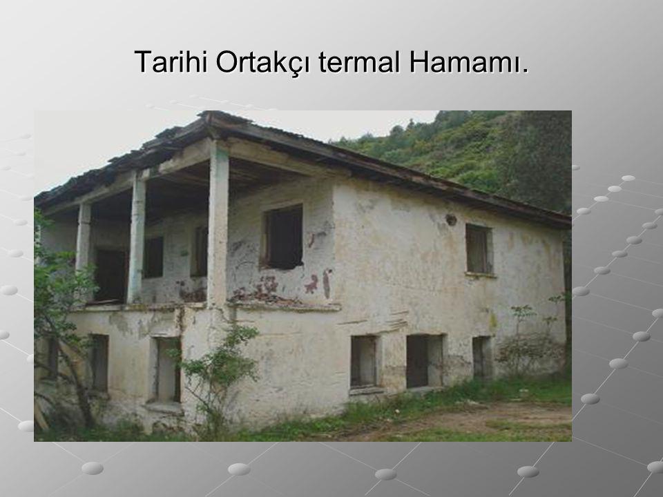 Tarihi Ortakçı termal Hamamı.