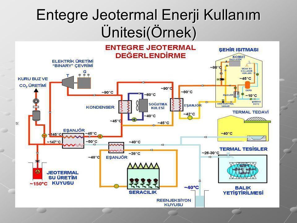 Entegre Jeotermal Enerji Kullanım Ünitesi(Örnek)