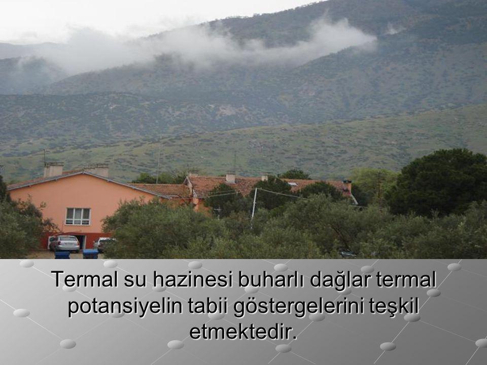 Termal su hazinesi buharlı dağlar termal potansiyelin tabii göstergelerini teşkil etmektedir.