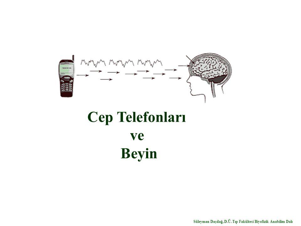 Cep Telefonları ve Beyin