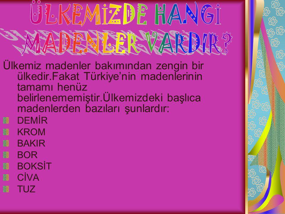 ÜLKEMİZDE HANGİ MADENLER VARDIR