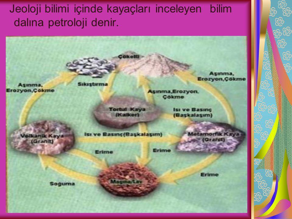 Jeoloji bilimi içinde kayaçları inceleyen bilim dalına petroloji denir.
