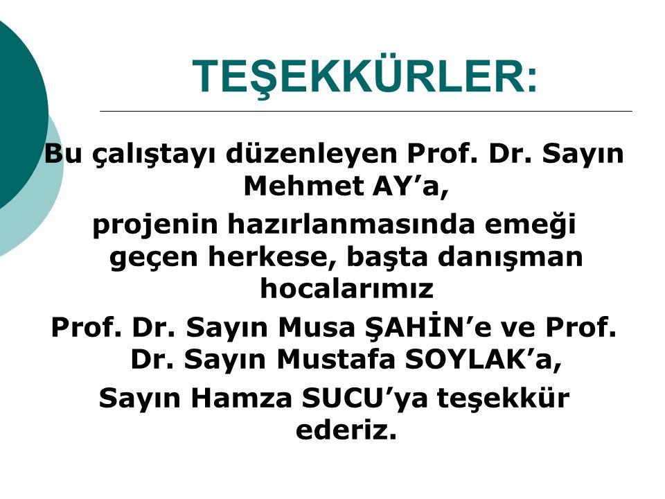 TEŞEKKÜRLER: Bu çalıştayı düzenleyen Prof. Dr. Sayın Mehmet AY'a,