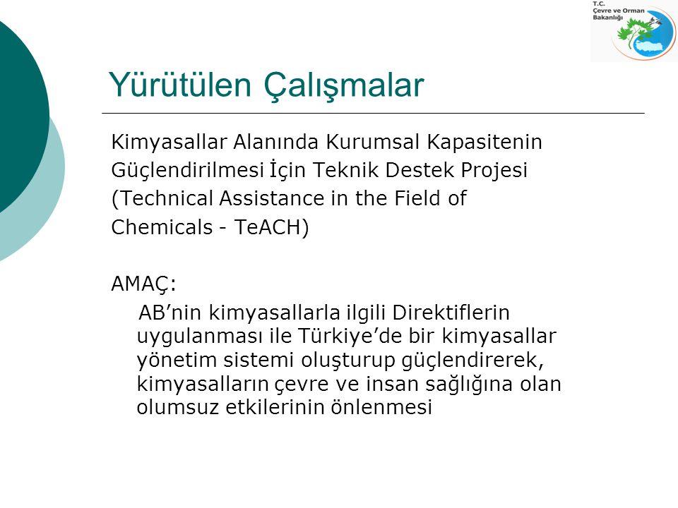 Yürütülen Çalışmalar Kimyasallar Alanında Kurumsal Kapasitenin