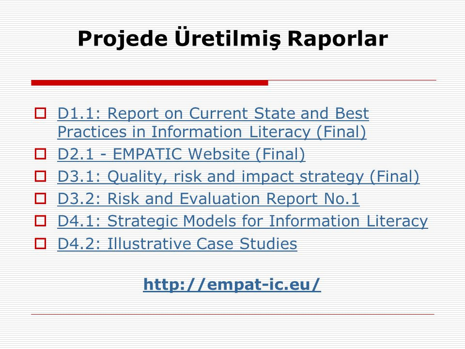 Projede Üretilmiş Raporlar