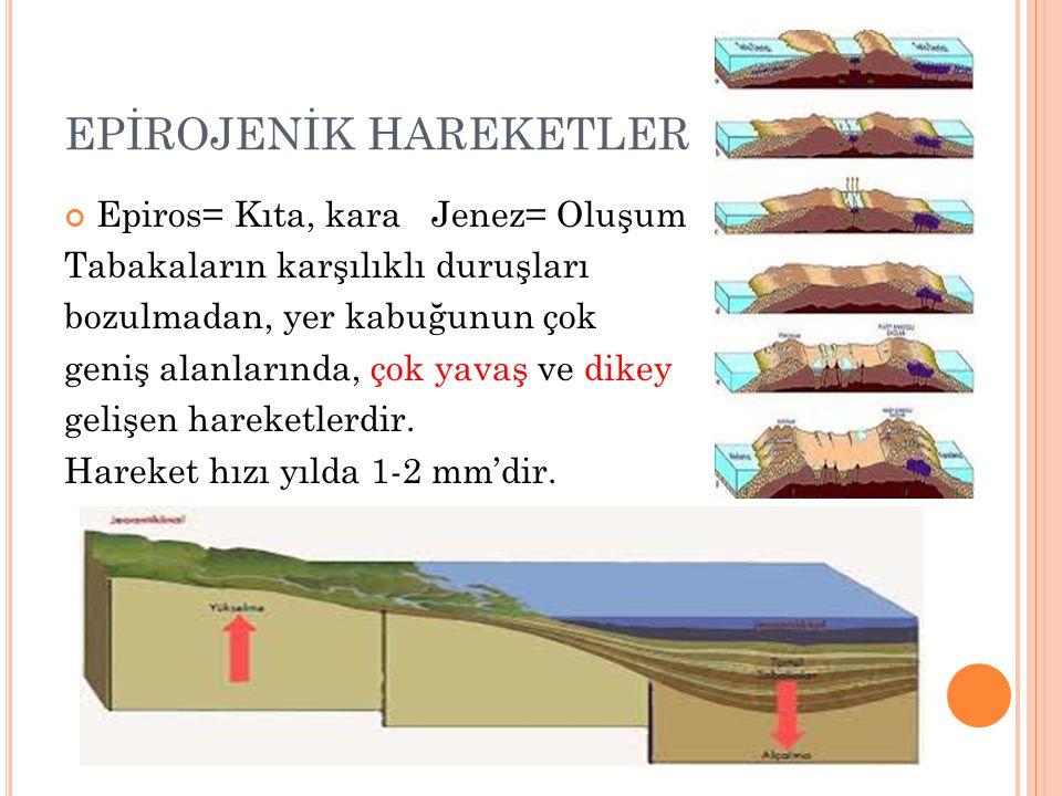 EPİROJENİK HAREKETLER