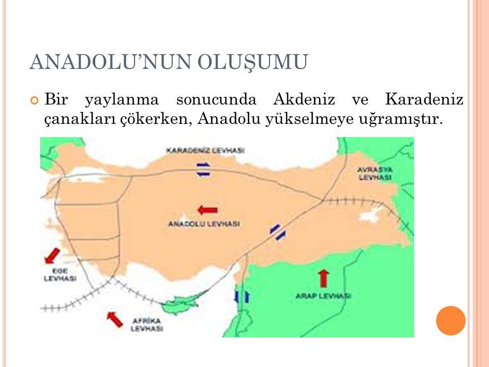 ANADOLU'NUN OLUŞUMU Bir yaylanma sonucunda Akdeniz ve Karadeniz çanakları çökerken, Anadolu yükselmeye uğramıştır.