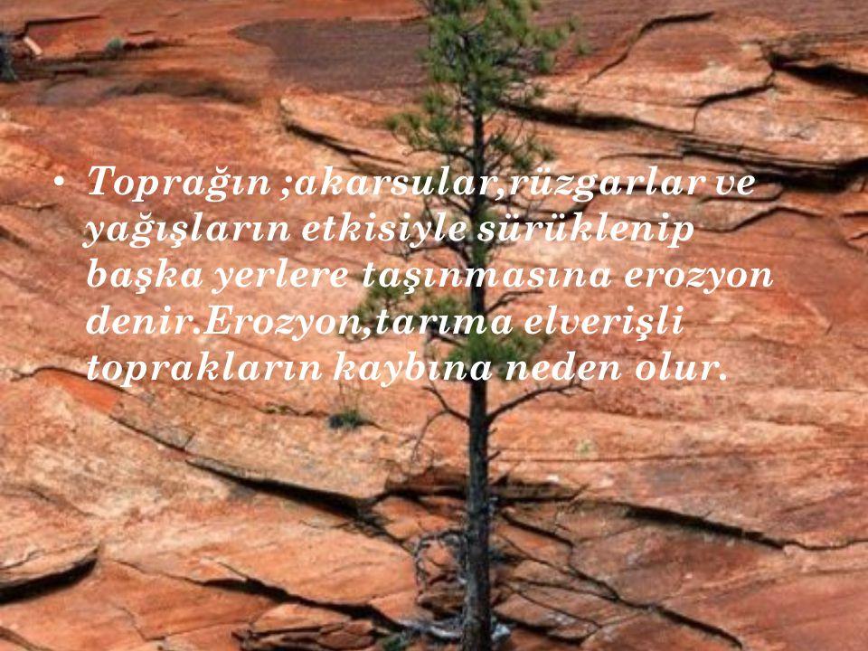 Toprağın ;akarsular,rüzgarlar ve yağışların etkisiyle sürüklenip başka yerlere taşınmasına erozyon denir.Erozyon,tarıma elverişli toprakların kaybına neden olur.