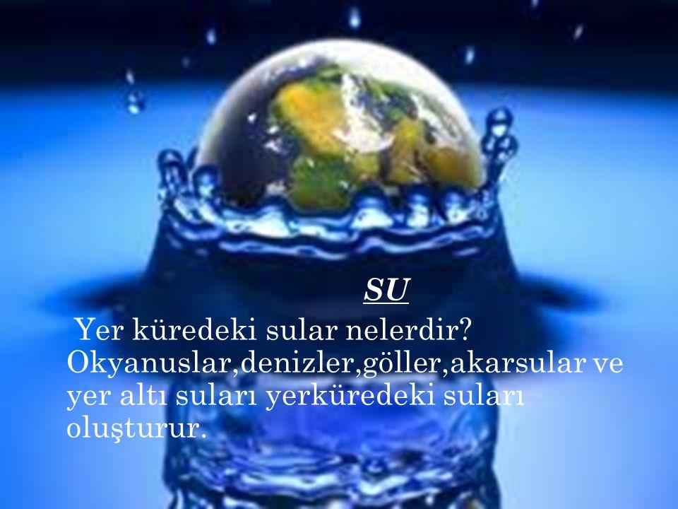 SU Yer küredeki sular nelerdir