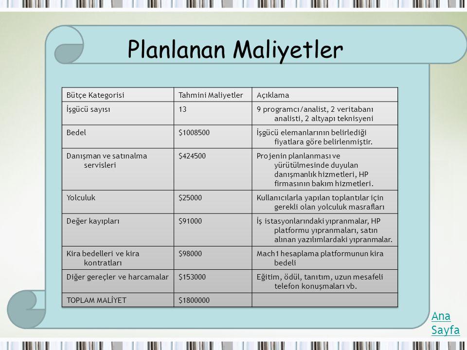 Planlanan Maliyetler Ana Sayfa Bütçe Kategorisi Tahmini Maliyetler