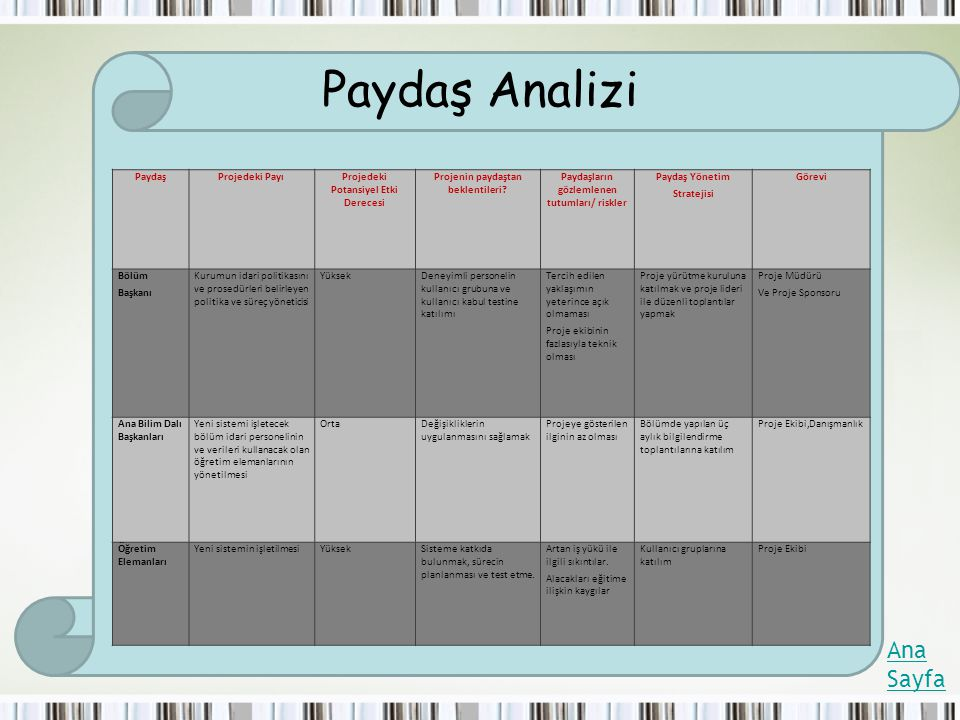 Paydaş Analizi Ana Sayfa Paydaş Projedeki Payı