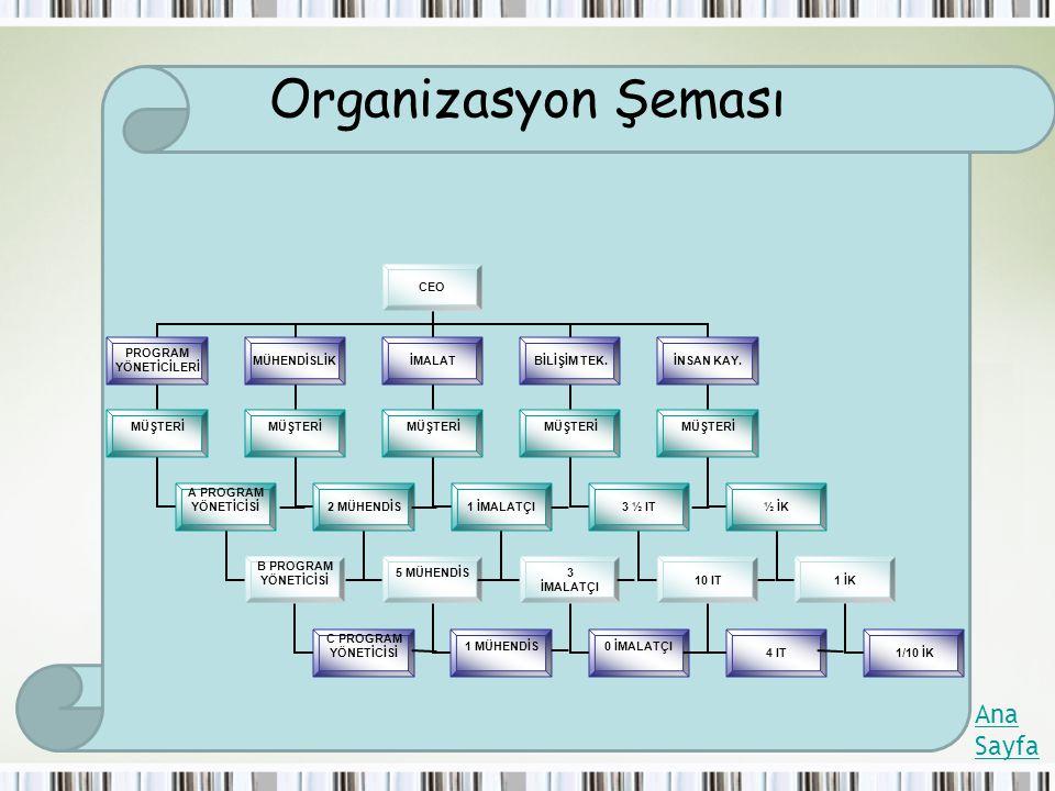 Organizasyon Şeması Ana Sayfa