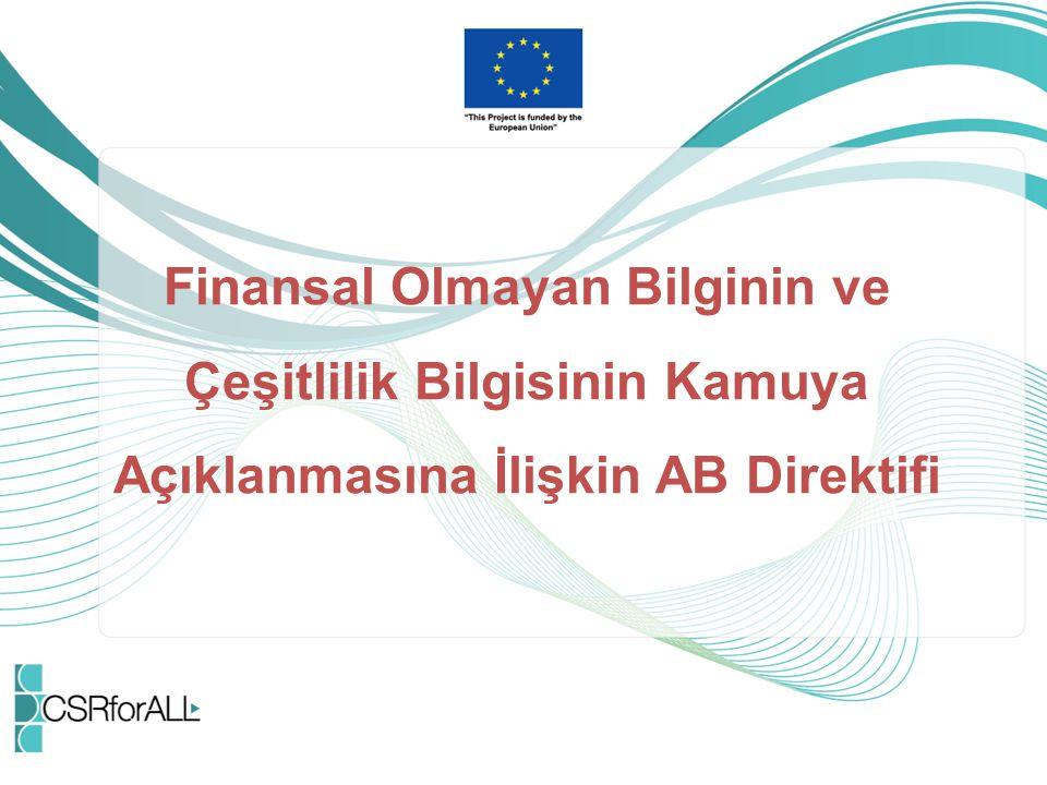 Finansal Olmayan Bilginin ve Çeşitlilik Bilgisinin Kamuya Açıklanmasına İlişkin AB Direktifi