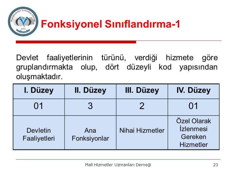 Fonksiyonel Sınıflandırma-1