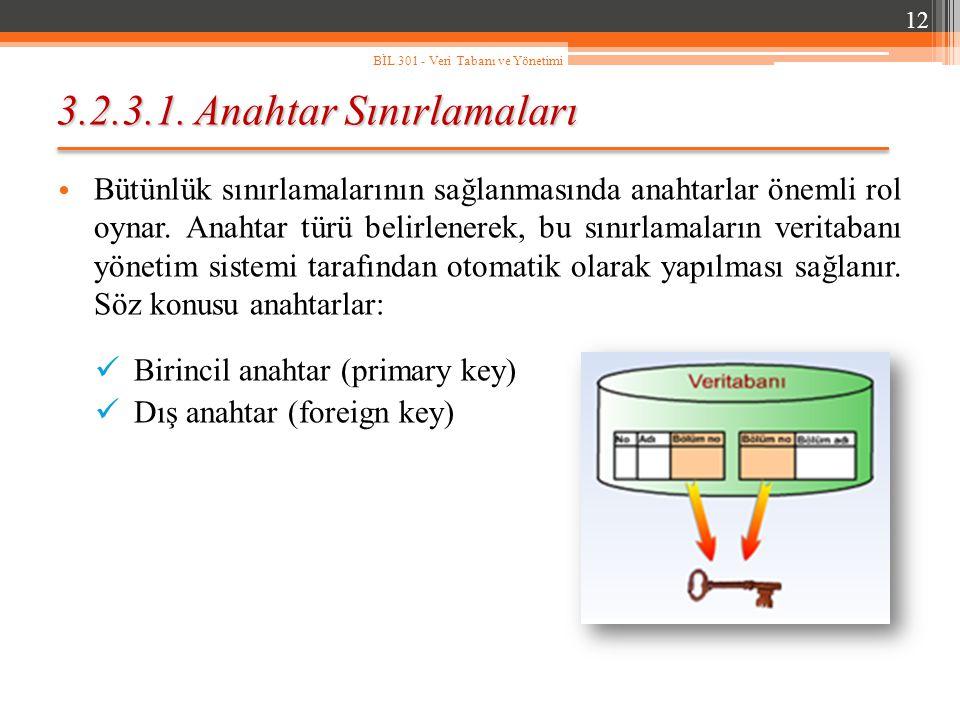 3.2.3.1. Anahtar Sınırlamaları