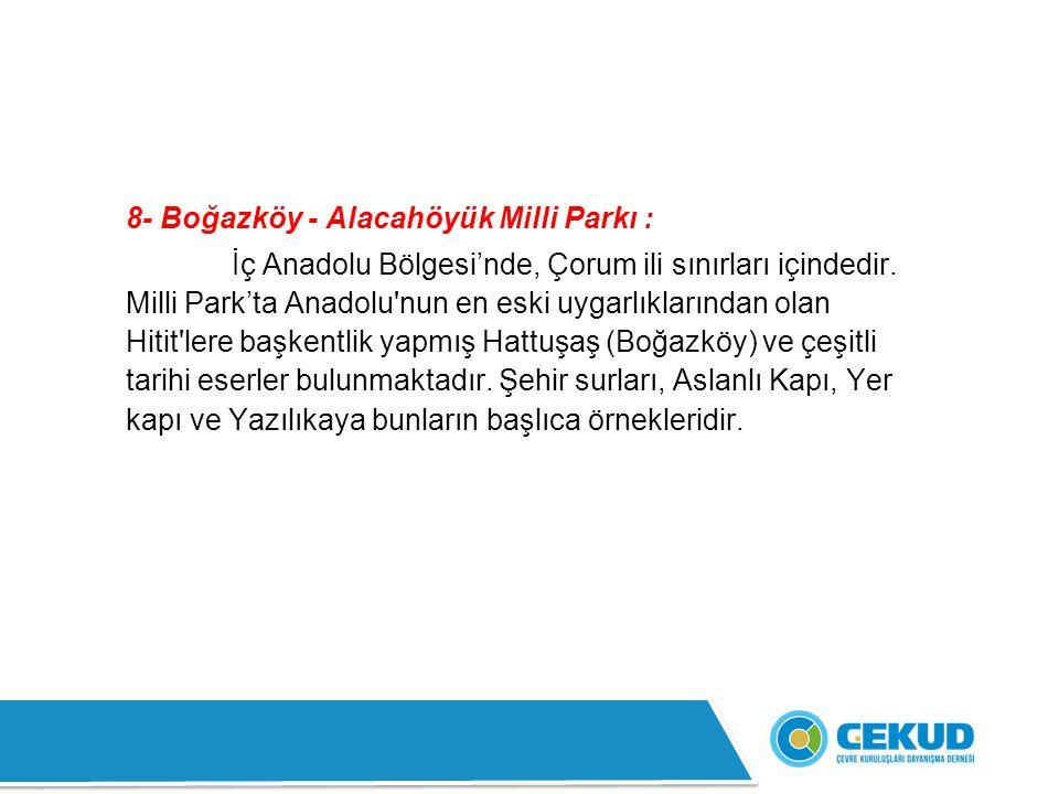8- Boğazköy - Alacahöyük Milli Parkı :