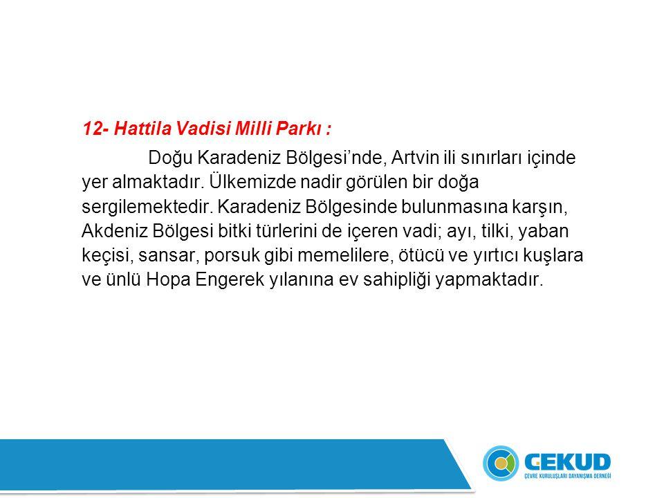 12- Hattila Vadisi Milli Parkı :