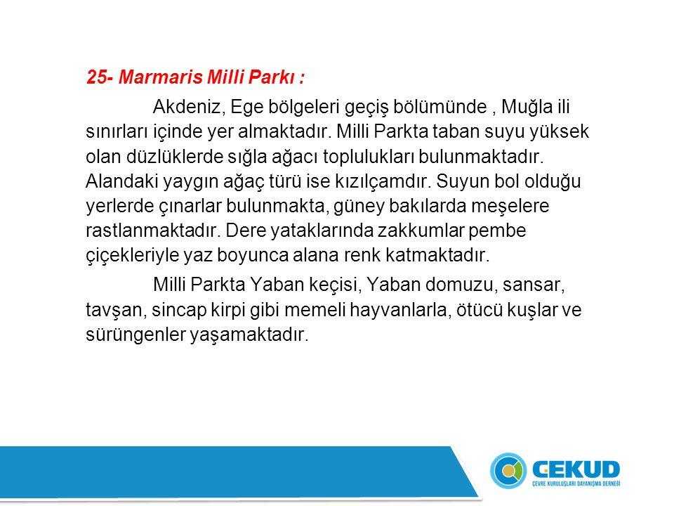 25- Marmaris Milli Parkı :