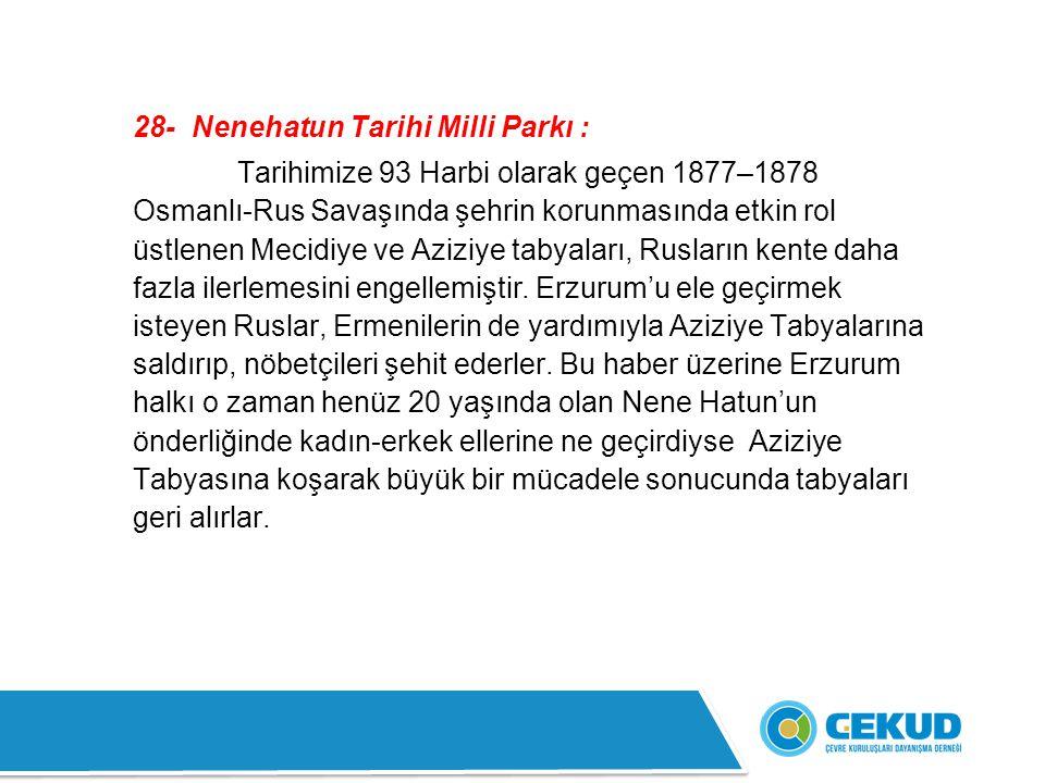 28- Nenehatun Tarihi Milli Parkı :