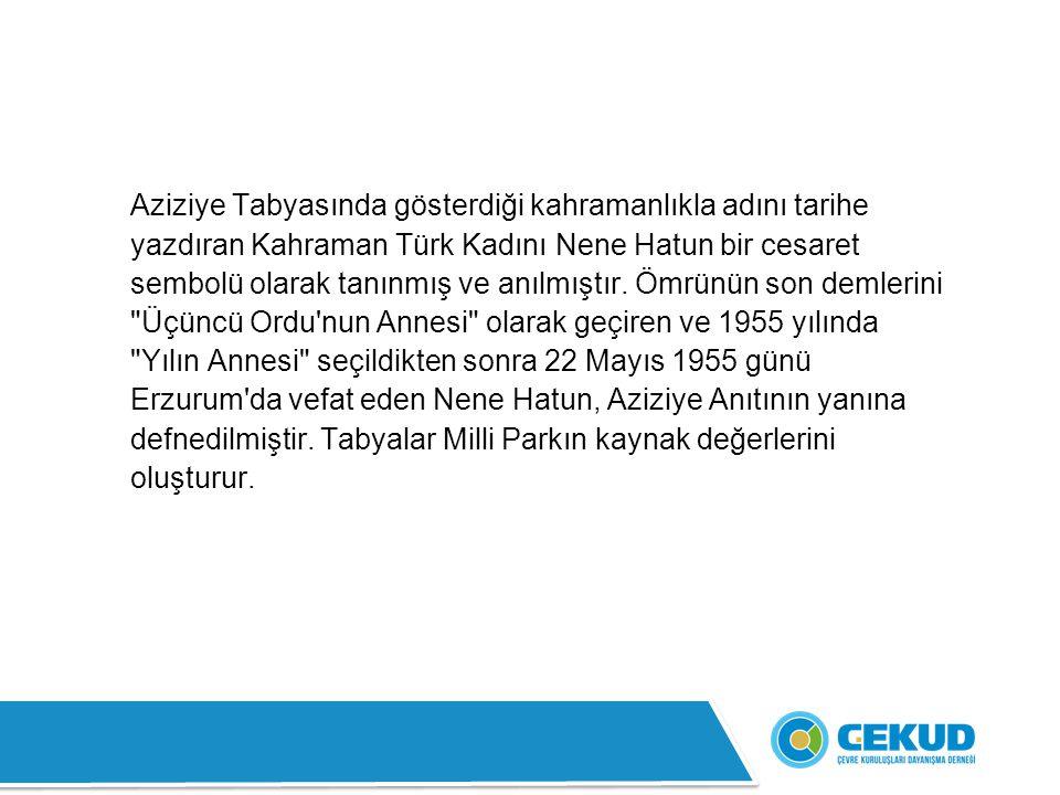 Aziziye Tabyasında gösterdiği kahramanlıkla adını tarihe yazdıran Kahraman Türk Kadını Nene Hatun bir cesaret sembolü olarak tanınmış ve anılmıştır.