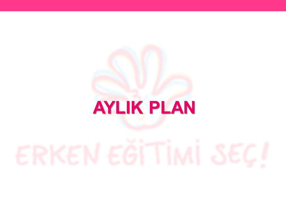 AYLIK PLAN
