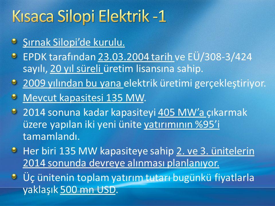 Kısaca Silopi Elektrik -1