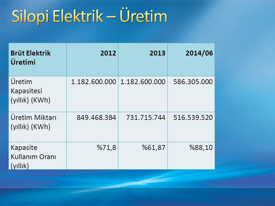 Silopi Elektrik – Üretim