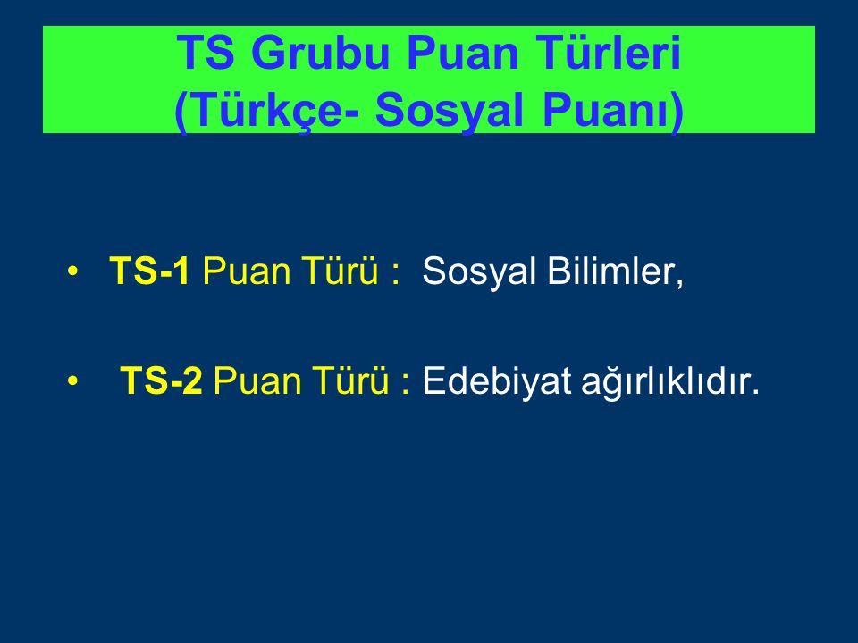 TS Grubu Puan Türleri (Türkçe- Sosyal Puanı)
