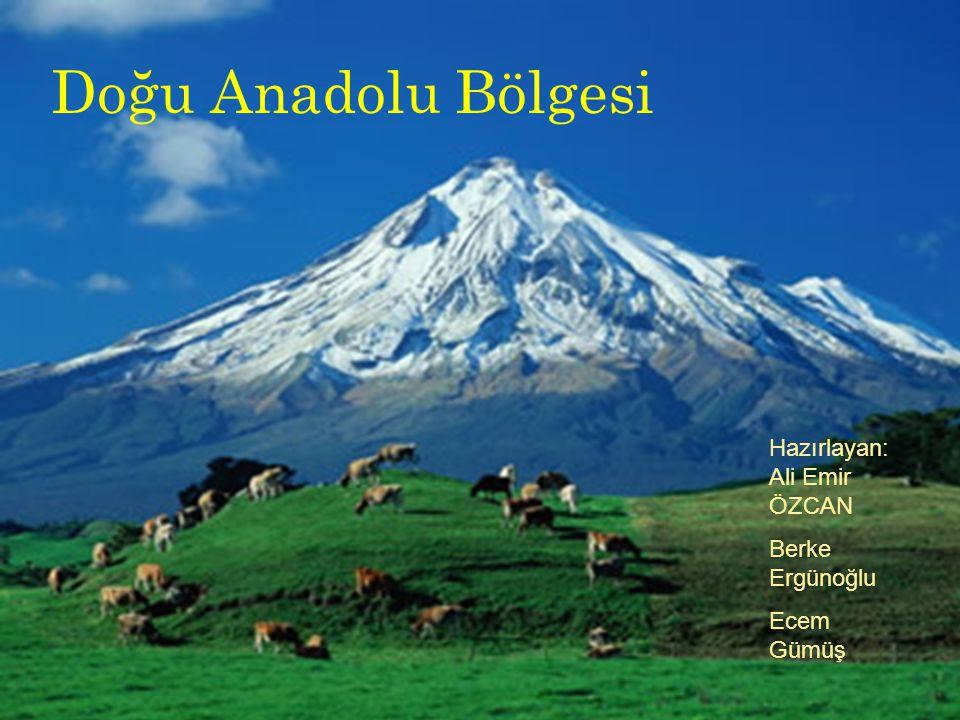 Doğu Anadolu Bölgesi Doğu Anadolu Bölgesi Hazırlayan:Ali Emir ÖZCAN