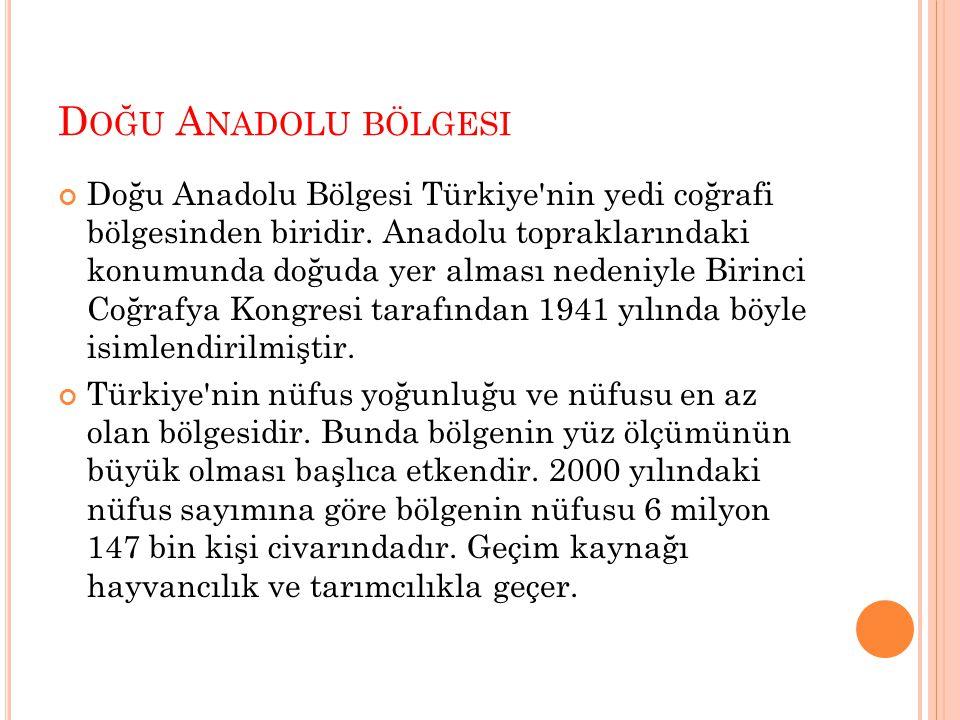 Doğu Anadolu bölgesi