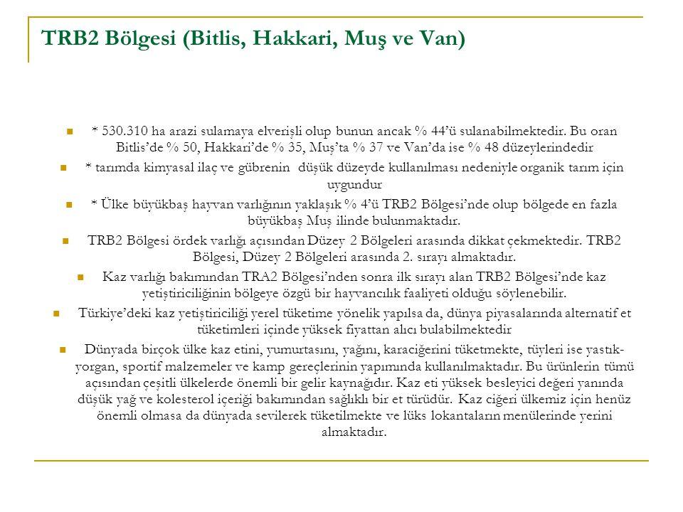 TRB2 Bölgesi (Bitlis, Hakkari, Muş ve Van)
