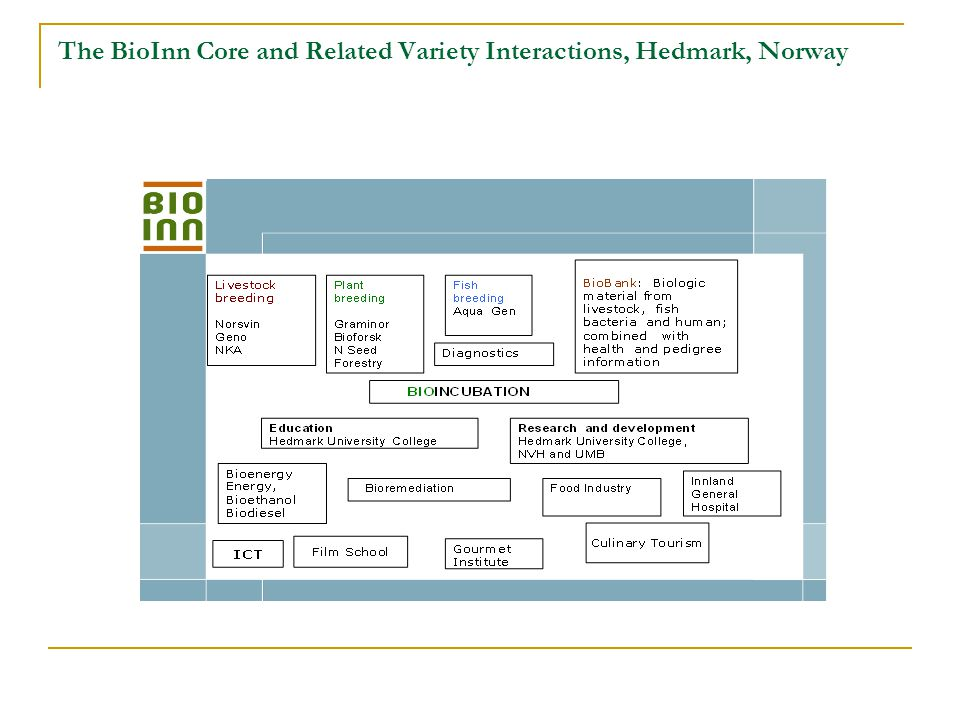 The BioInn Core and Related Variety Interactions, Hedmark, Norway