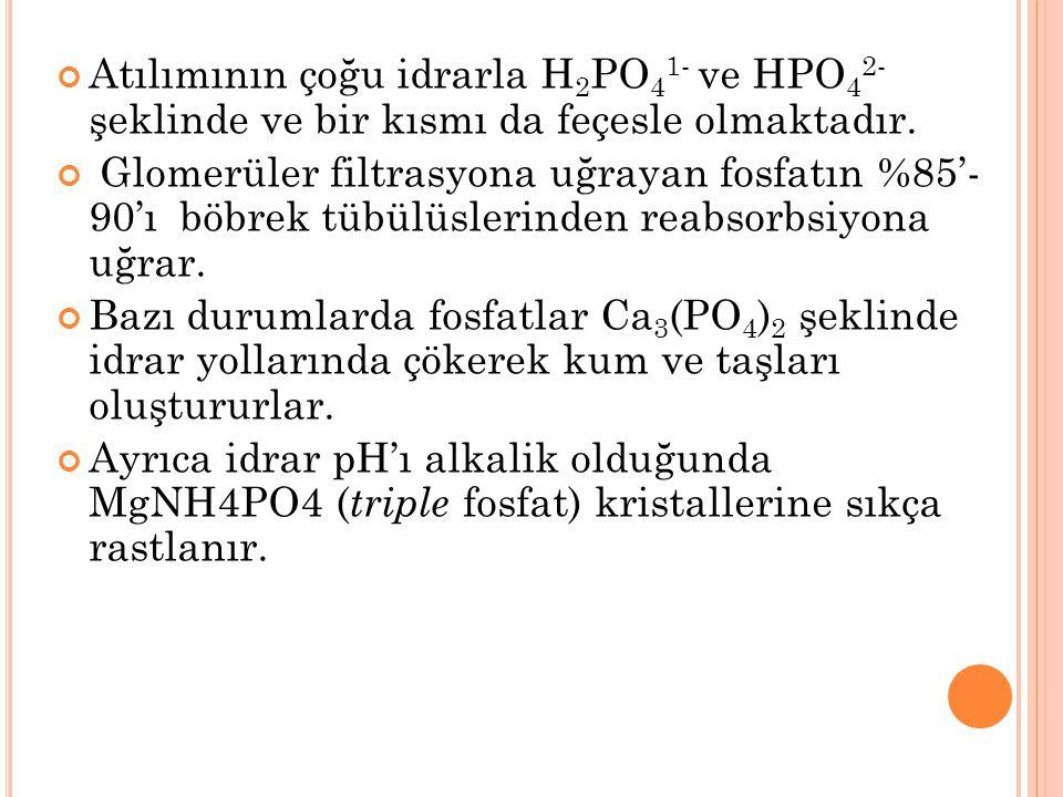 Atılımının çoğu idrarla H2PO41- ve HPO42- şeklinde ve bir kısmı da feçesle olmaktadır.