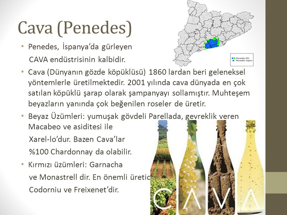 Cava (Penedes) Penedes, İspanya'da gürleyen
