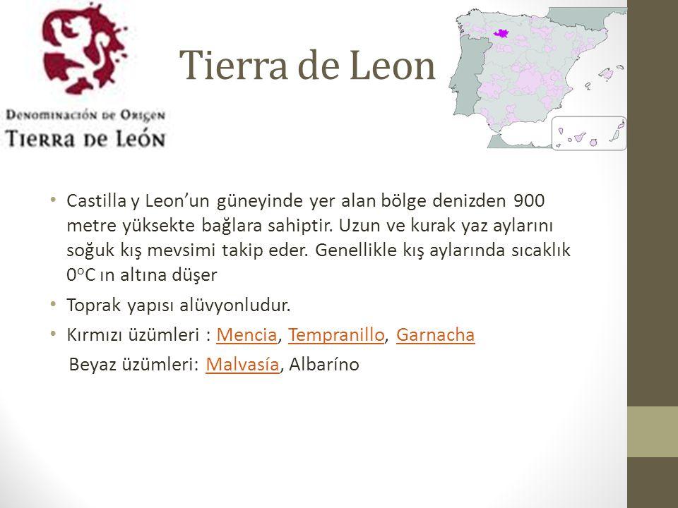 Tierra de Leon
