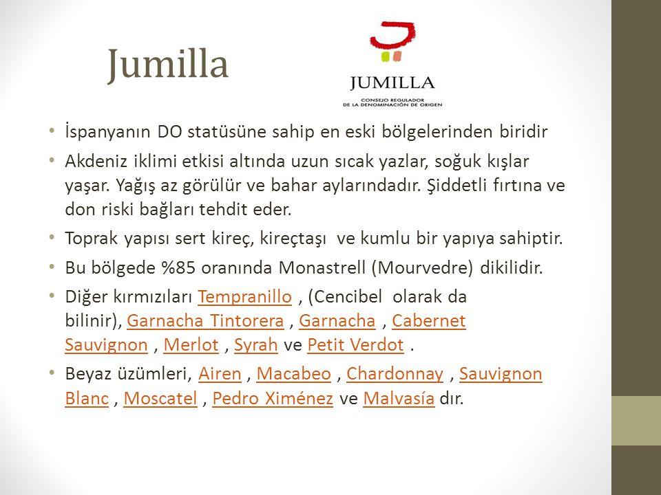 Jumilla İspanyanın DO statüsüne sahip en eski bölgelerinden biridir