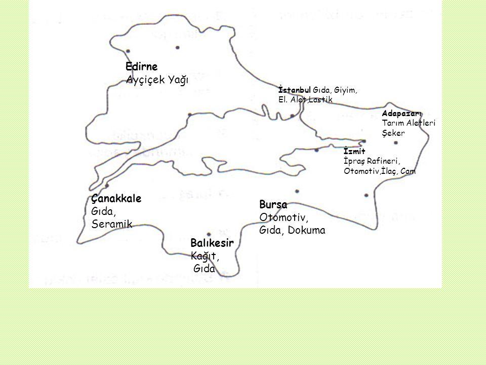 Çanakkale Gıda, Seramik Bursa Otomotiv, Gıda, Dokuma