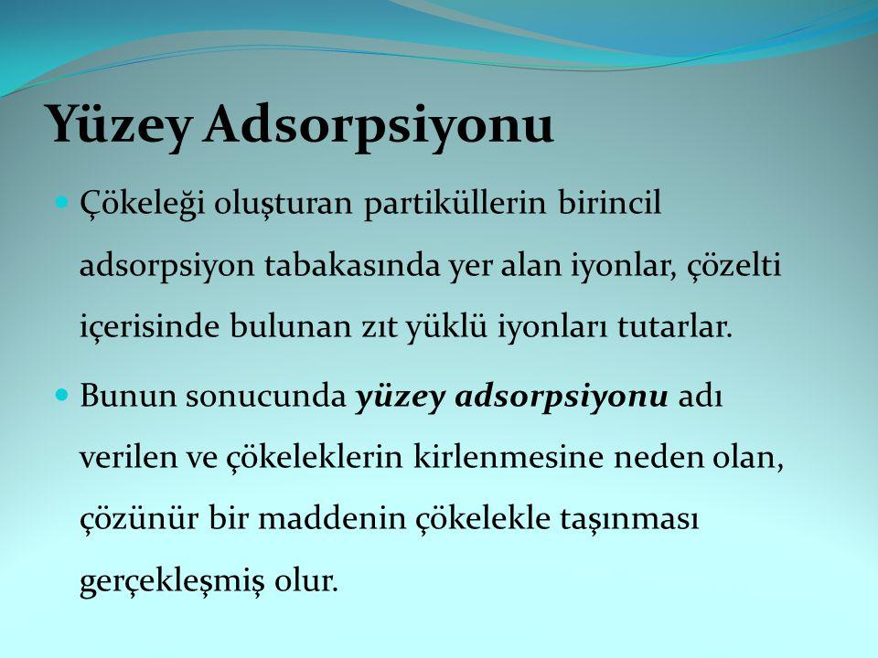 Yüzey Adsorpsiyonu