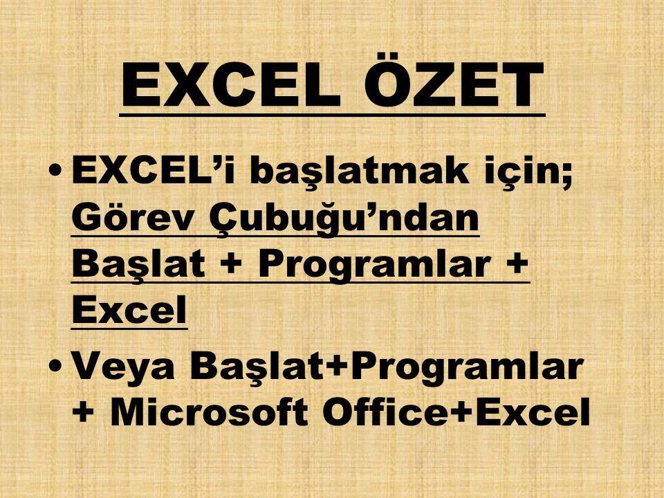 EXCEL ÖZET EXCEL'i başlatmak için; Görev Çubuğu'ndan Başlat + Programlar + Excel.