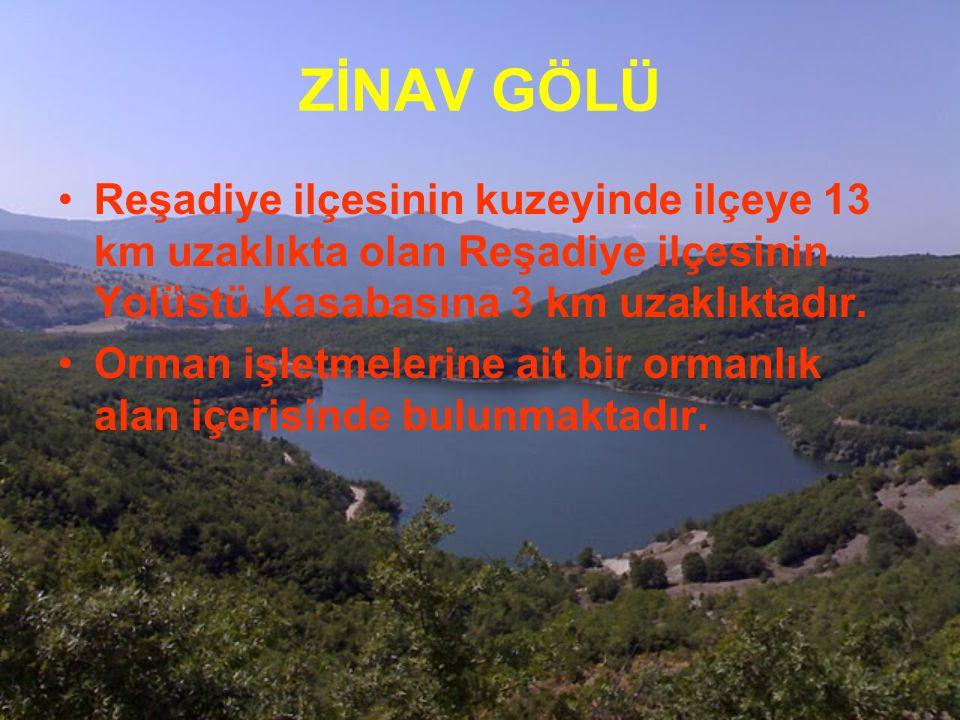 ZİNAV GÖLÜ Reşadiye ilçesinin kuzeyinde ilçeye 13 km uzaklıkta olan Reşadiye ilçesinin Yolüstü Kasabasına 3 km uzaklıktadır.