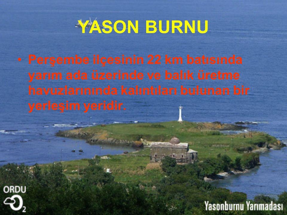 YASON BURNU Perşembe ilçesinin 22 km batısında yarım ada üzerinde ve balık üretme havuzlarınında kalıntıları bulunan bir yerleşim yeridir.
