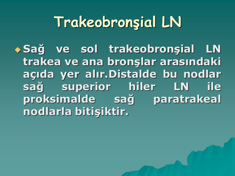 Trakeobronşial LN