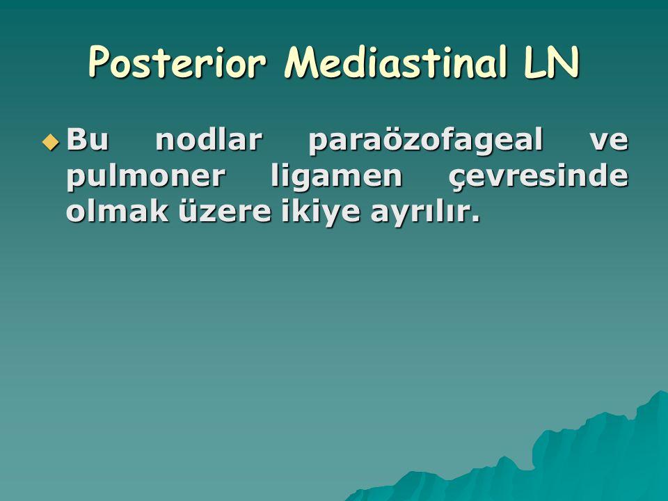 Posterior Mediastinal LN