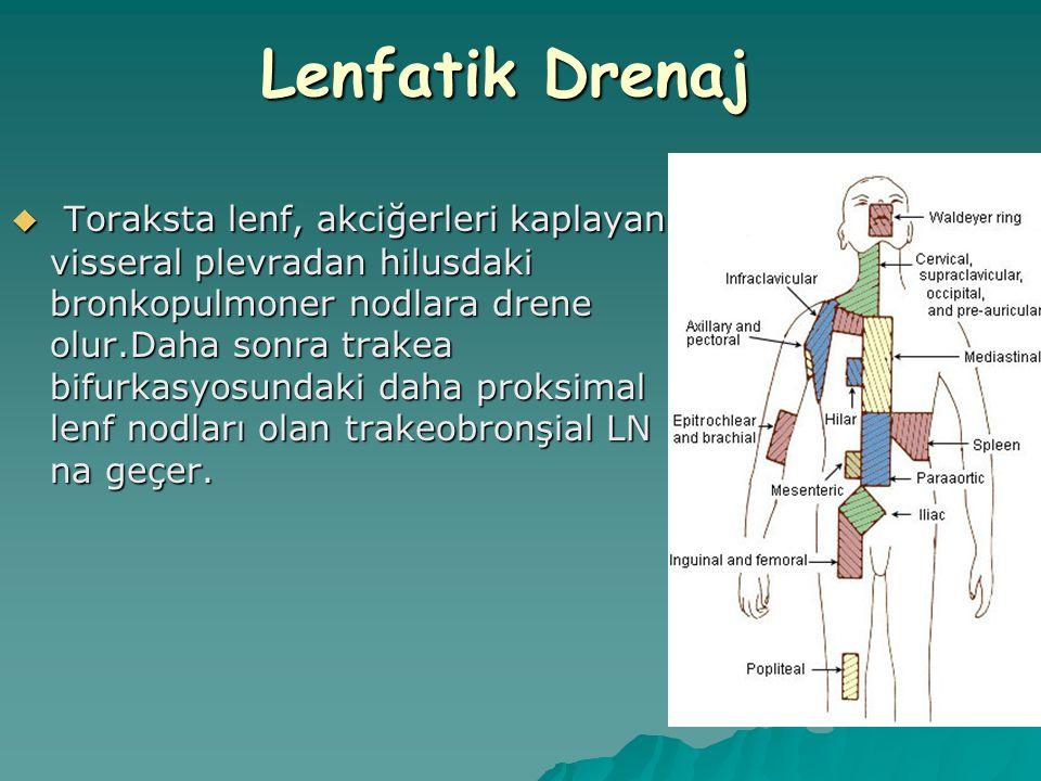 Lenfatik Drenaj