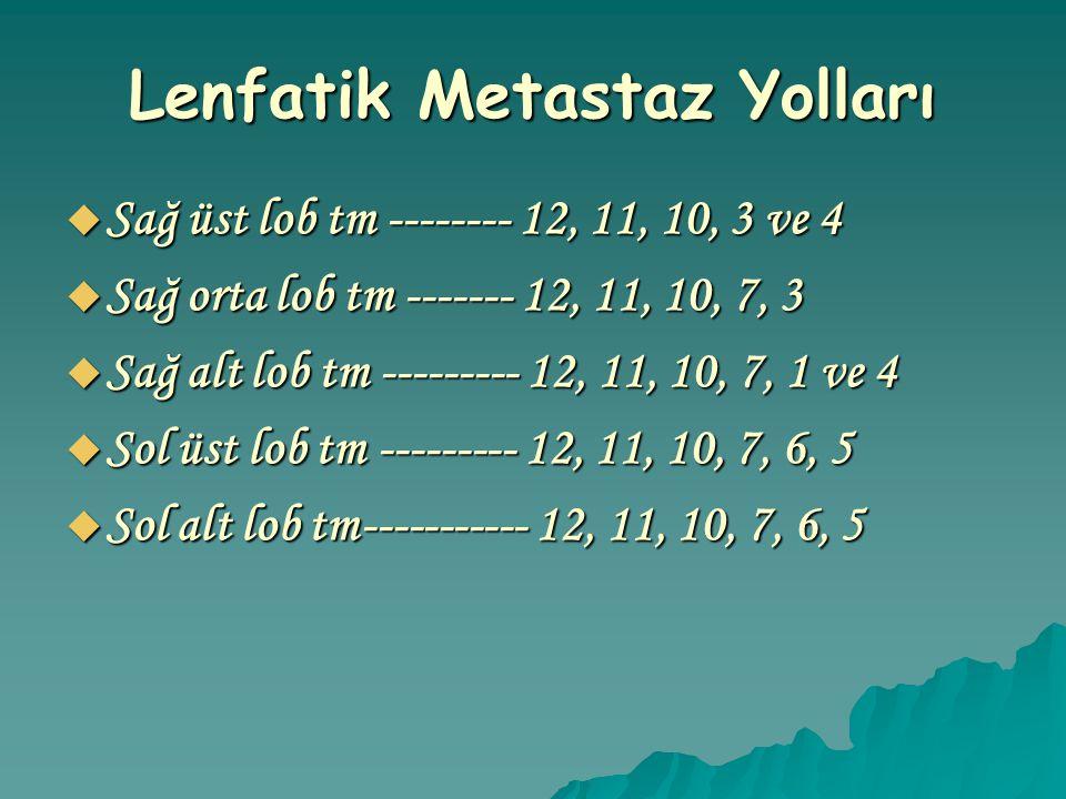 Lenfatik Metastaz Yolları